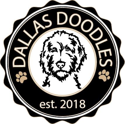 Dallas Doodles | Fuller Family